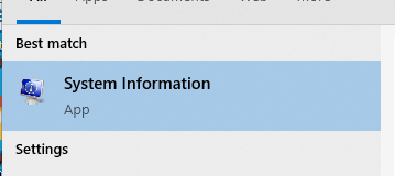 What System Information looks like in the best results of a computer menu search.