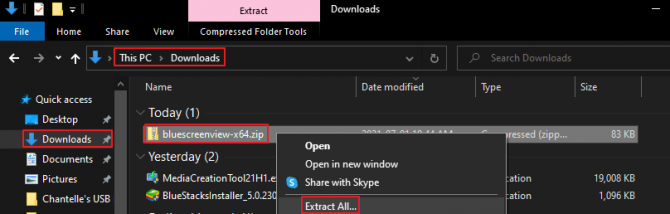 Extract All Files from BlueScreenView Zipped Folder
